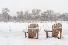 Snöig landskap för vinter i Montreal royaltyfria foton