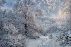 Snöig landskap för vinter på den soliga dagen fotografering för bildbyråer