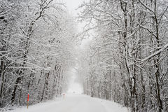 Snöig landskap i Engelberg Arkivfoton