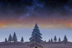 Snöig landskap med granträd Fotografering för Bildbyråer