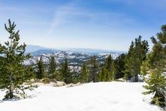 Snöig landskap på slingan som monterar det San Jacinto maximumet, Kalifornien arkivbild