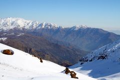 Snöig landskapSantiago, Chile Royaltyfria Bilder