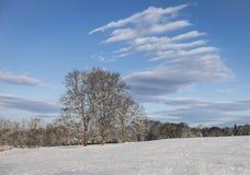 Snöig lantgårdfält med dramatiska moln fotografering för bildbyråer