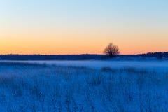 Snöig lantligt landskap för vinter i afton Royaltyfria Bilder