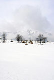 Snöig liggande Arkivbild
