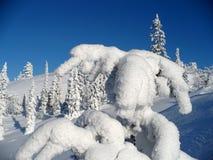 snöig liggande Royaltyfria Foton