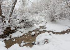 Snöig liten vik Arkivbilder