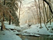 Snöig liten vik Arkivfoton