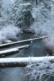 snöig liten vik Royaltyfri Foto