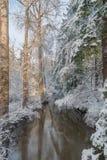 Snöig liten vik Royaltyfri Fotografi