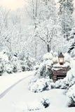 snöig ljus morgon för körbana fotografering för bildbyråer