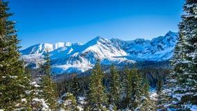 Snöig maxima i Tatra berg övervintrar, Polen arkivbild