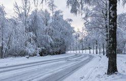 Snöig motorisk väg royaltyfri fotografi