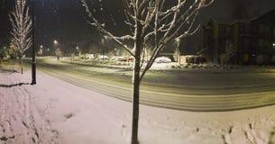 Snöig natt royaltyfri bild