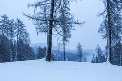 Snöig och dimmigt bergvinterlandskap arkivfoto