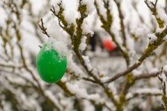 Snöig påskägg på ett träd royaltyfri bild