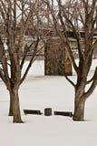 Snöig parkera Fotografering för Bildbyråer