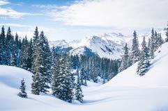 Snöig plats Royaltyfri Fotografi