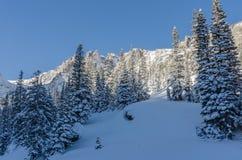 Snöig plats i Colorado berg Arkivfoto