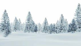 Snöig prydlig skog på en vit bakgrund Royaltyfri Foto