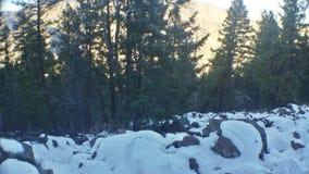 Snöig rocks Arkivfoton