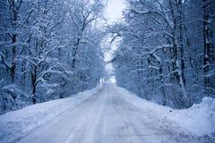 Snöig rutt Arkivfoto