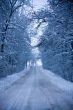 Snöig rutt Arkivbilder