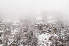 Snöig sörja arkivbilder