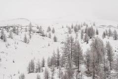 Snöig sörja royaltyfria bilder