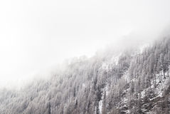 Snöig sörja royaltyfri fotografi