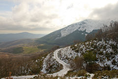 Snöig skogsbevuxet och bergigt vinterlandskap Arkivfoto