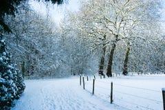 Snöig slinga på gränsen av den Forresten ängen arkivbild