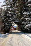 snöig slutlantgårdväg Royaltyfria Bilder