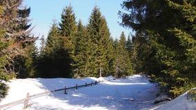 Snöig solig bergbana Arkivfoton