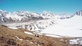 Snöig sommar i Himalayas Arkivfoto