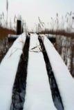 Snöig spång nära till dammet i Januari royaltyfri foto
