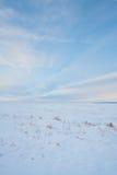 Snöig ståendeprärielandskap Arkivfoto