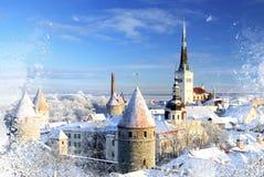 Snöig stad royaltyfria bilder