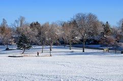 snöig stads- för stenblockco-park Arkivfoton