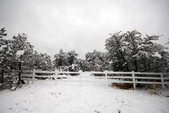snöig staket Arkivfoto