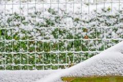 Snöig staket i en trädgård royaltyfria bilder