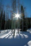 Snöig steniga berg Utah Royaltyfri Foto