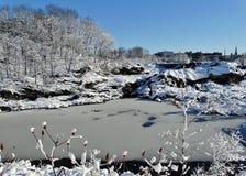 Snöig stora nedgångar Arkivbild