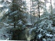 Snöig ström arkivfoton