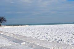 Snöig strand Royaltyfri Fotografi