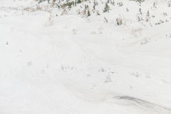 Snöig texturera Arkivbilder