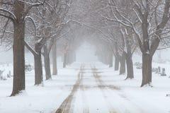Snöig träd fodrad väg till och med en kyrkogård Arkivbild