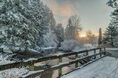 Snöig träd och liten vik och staket Fotografering för Bildbyråer