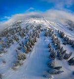Snöig träd och skogar i de schweiziska jura bergen Arkivbilder