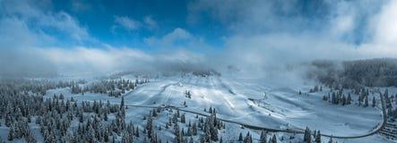 Snöig träd och skogar i de schweiziska jura bergen Arkivbild